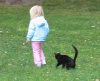 Børn skal opdrages til at omgås med katte