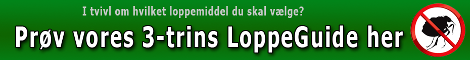 Loppetest