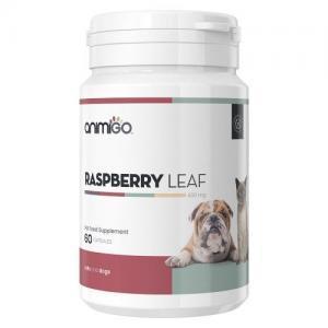 Raspberry leaf anvendes til hunde i forbindelse med drægtighed og fødsel